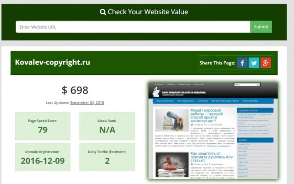 your website value отчет