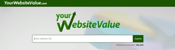 your website value