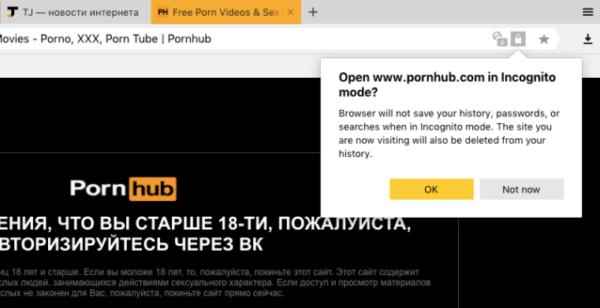 Порно можно смотреть в Яндекс.Браузере