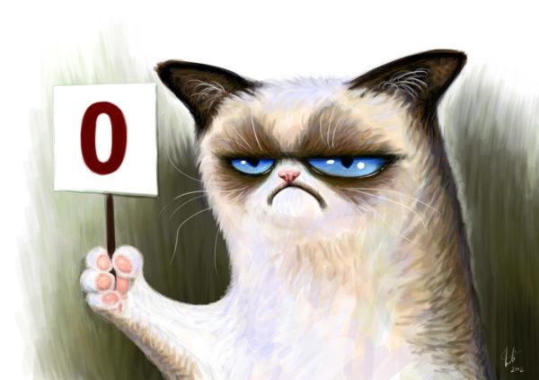 Недовольный кот ноль